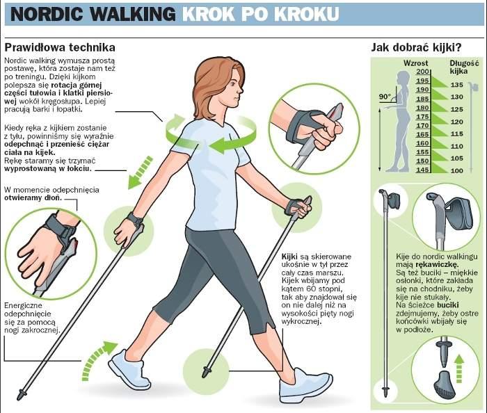 Efekty nordic walkingu - dlaczego warto maszerować z kijkami?